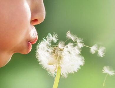 5 Motivi per cui le Allergie sono aumentate